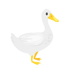 farm animal - duck vector image