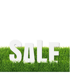 Green grass border with sale poster vector