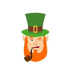 leprechaun winks dwarf with red beard happy emoji vector image