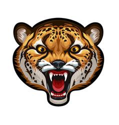 Mascot head cheetah vector