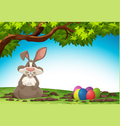 rabbit and easter egg in nature vector image