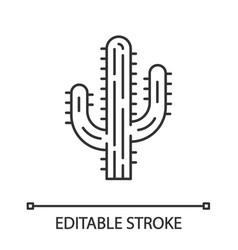 saguaro cactus linear icon vector image