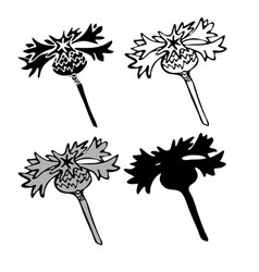 thistle flowers in black and white style can be vector image