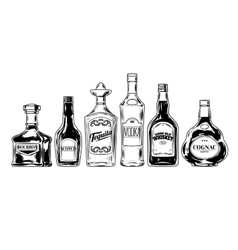 set of bottles for alcohol vector image