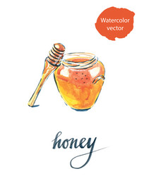 watercolor of jar with honey vector image vector image