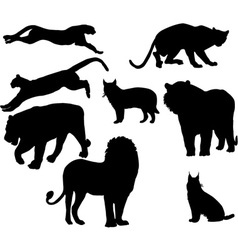 cats vs vector image