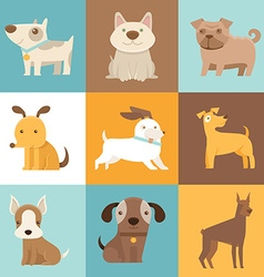 Funny and friendly dogs and puppies vector image vector image