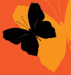 Butterfly effect vector