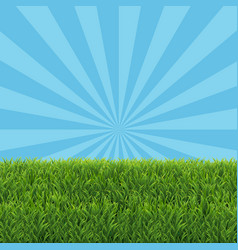 Green grass border with sale text vector