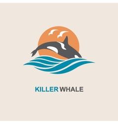 Killer whale icon vector