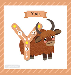 Letter y uppercase tracing yak vector