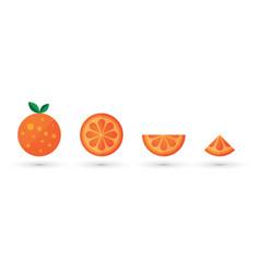 orange fruit slice abstract icon set vector image