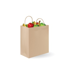 grochery bag with fruits vector image