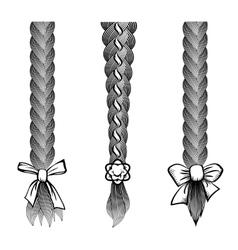 Hair braids set vector image