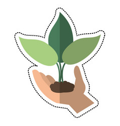 cartoon hand holding plant leaves vector image vector image