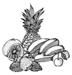 Bananas lemon strawberry cherry pineapple drawing vector