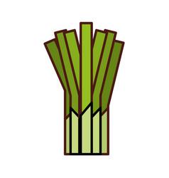 Celery fresh vegetable icon vector
