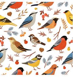 Forest winter birds pattern animal vector
