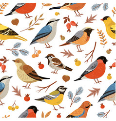 forest winter birds pattern forest animal vector image