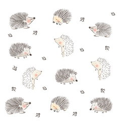 Hedgehog pattern vector