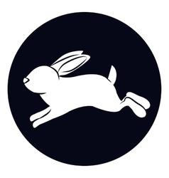 Isolated rabbit animal design vector