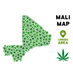 Marijuana collage mali map vector
