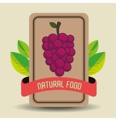 Natural food product g vector