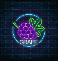 neon glowing sign of grape with bunch of grapes vector image