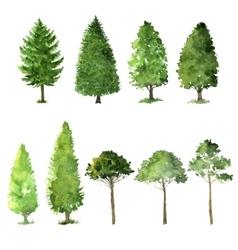 set trees drawing watercolor vector image