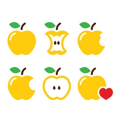 Yellow apple apple core bitten half icon vector image