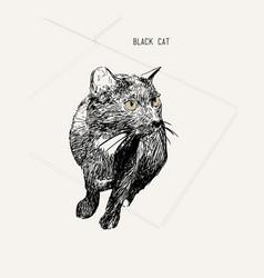 black cat sitting hand drawn sketch line art vector image vector image