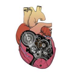 Heart with mechanism vector