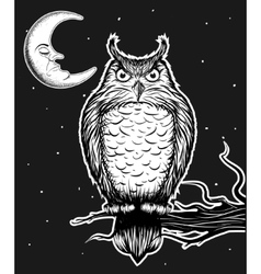 Owl is sitting on the tree vector image