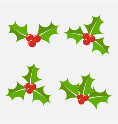 Holly berry set vector