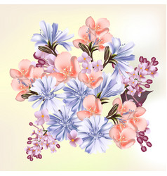 beautiful field flowers for your design vector image