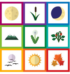 Flat icon natural set of lunar berry cattail and vector