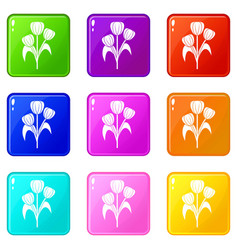 Flowers icons 9 set vector