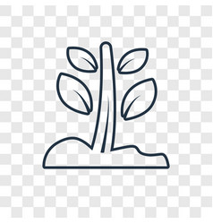 growing plant concept linear icon isolated on vector image