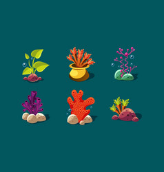 Seaweed corals and underwater plants set vector