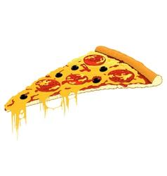 Slice pizza vector