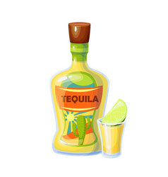 Tequila bottle and shot glass with slice lime vector