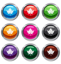 maple leaf set 9 collection vector image
