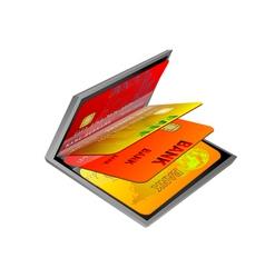 business wallet vector image