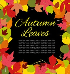 autumn leaves template vector image vector image
