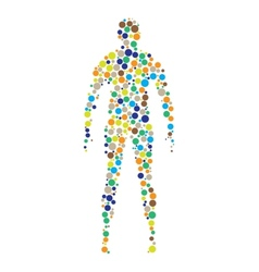 human body outline vector image