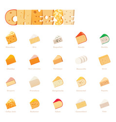 cheese types icon set vector image