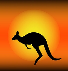 Kangaroo silhouette vector image