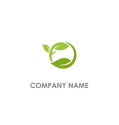 round leaf organic seed logo vector image