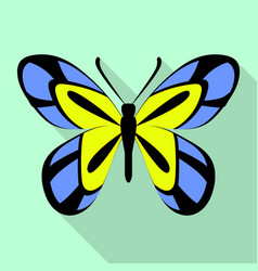 tropical butterfly icon flat style vector image