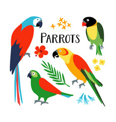 set of tropical parrots with palm leaf and vector image vector image